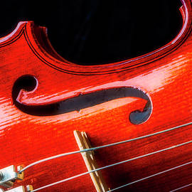 Beautiful Violin Close Up by Garry Gay
