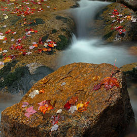 Beauty Of New Hampshire by Juergen Roth