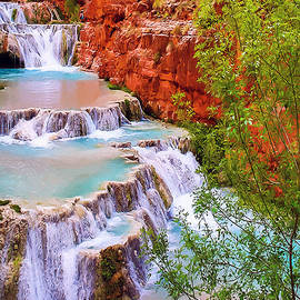Dr Bob Johnston - Beaver Falls Grand Canyon Painting