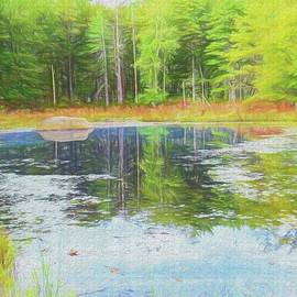 Rusty Smith - Beaver Pond reflections
