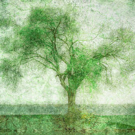 Becoming Green by Hal Halli