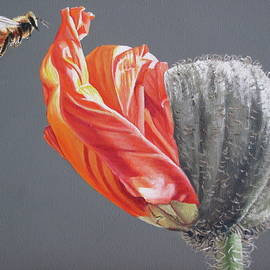 Bee and opening poppy by Lillian  Bell