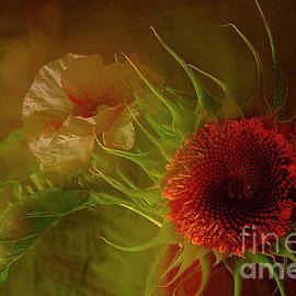 Before The Beauty Of Summer Goes Away. by Alexander Vinogradov