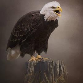 Jordan Blackstone - Begin Doing - Eagle Art