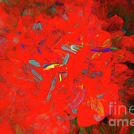 Begonia Abstract by Kay Brewer