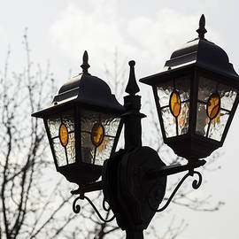 Georgia Mizuleva - Bejeweled Pair - Stained Glass Lanterns and Bare Branches