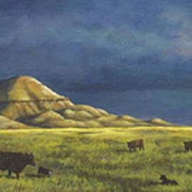 Kim Lockman - Belt Butte Spring