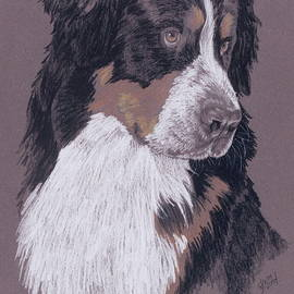 Berner by Barbara Keith