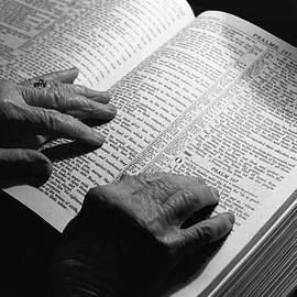 Finding Treasure In The Word by Rodger Painter
