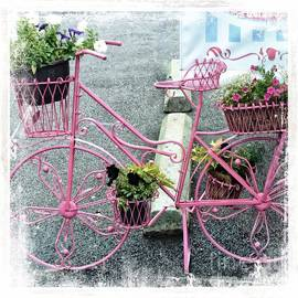 Kathleen Struckle - Bicycle And Flowers