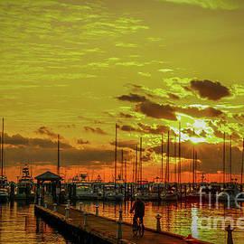 Tom Claud - Bicycle and Marina Sunrise