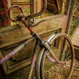 Bicycle by Mateusz Bilinski