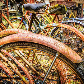 Debra and Dave Vanderlaan - Bicycles