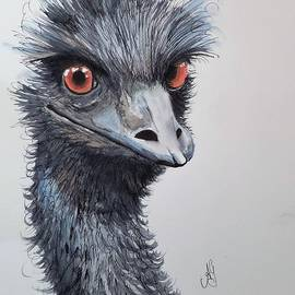 Anne Gardner - Big Bird