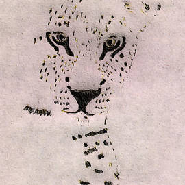 Big Cat by Barbara Moignard