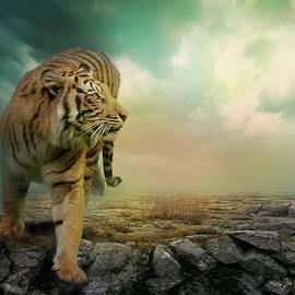 Big Tiger - Daria Bogdan
