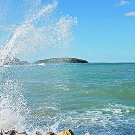 Anna Maloverjan - Big wave on the blue sea