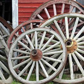 Big Wheels by Steve Gass