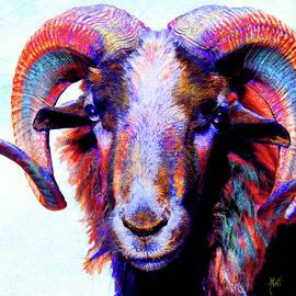 Bighorn Ram Sheep by Michele Avanti
