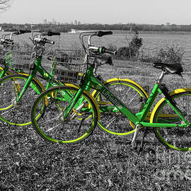 Bike Triplets Select Color by Jennifer White