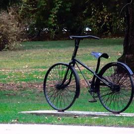 Vesna Martinjak - Bike