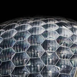 Martin Newman - Bio Dome