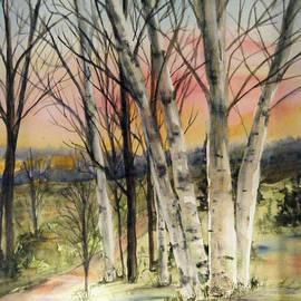 Birch Trees On Canvas by Diane Ziemski