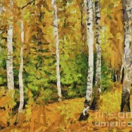 Dragica Micki Fortuna - Birches And Spruces