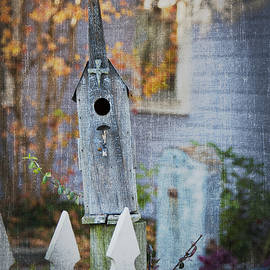 Greg Kluempers - Bird House in Elsah IL IMG 9502