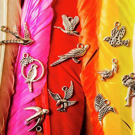 Bird icons and rainbow feathers - Jorgo Photography - Wall Art Gallery