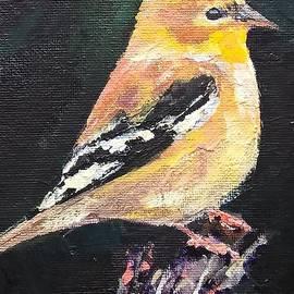 Bird by Lisa Dionne