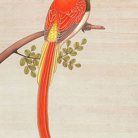 Jagdeesh Prasad - bird of Paradise Watching painting forest indian miniature watercolor art paper gift