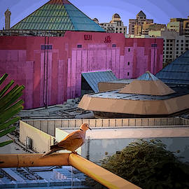 Bird Over The View Dubai - Sands Of Time by Susan Hendrich