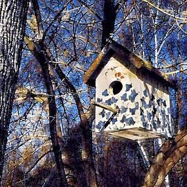 Brenda Plyer - Birdhouse with Blue Sky