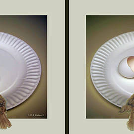 Brian Wallace - Birds Of A Feather - Gently cross your eyes and focus on the middle image