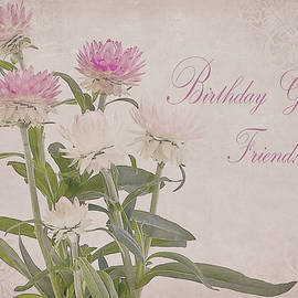 Sandra Foster - Birthday Greetings Friend - Straw Flowers