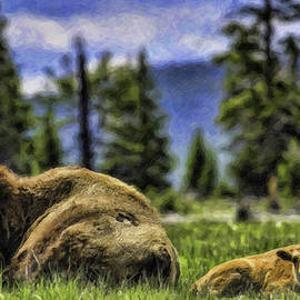 Bison-dwp1095282 by Dean Wittle