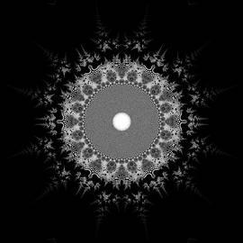 Black And White 236 by Robert Thalmeier