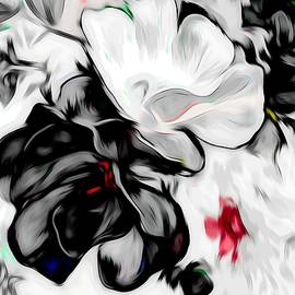 Debra Lynch - Black and White Roses With A Hint Of Color