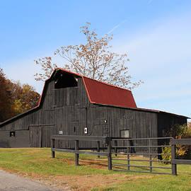 Black Barn, Red Roof by Lorraine Baum