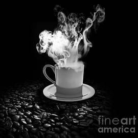 Stefano Senise - Black Coffee