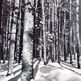 Black forest watercolor