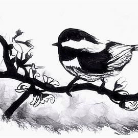 Debra Lynch - Black Headed Chickadee Bird Sketch