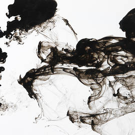 Black Ink Swirls In Water by TERRY MCCORMICK