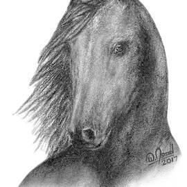 Black Mustang by Walter Israel