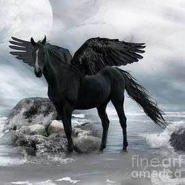 Julie Ware - Black Pegasus