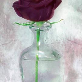 Hal Halli - Black Rose - Glass Vase