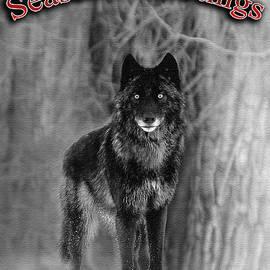Wildlife Fine Art - Black Wolf seasons greetings
