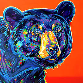 Blackcomb Bear by Derrick Higgins