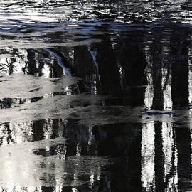 Richard Andrews - Bleak Winter